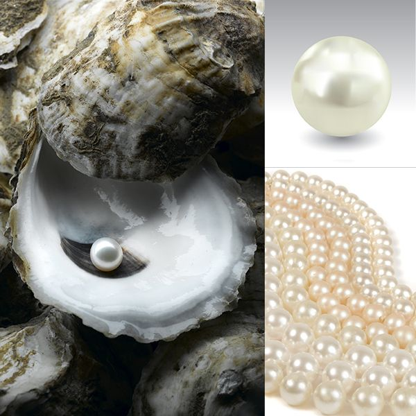 Pearl Jewelry by Offerings Jewelry