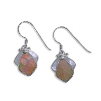 Brown Shell and Mother of Pearl Earrings
