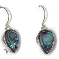 Paua Shell Latchback Earrings