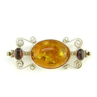 Amber Pin-Pendant with Garnet