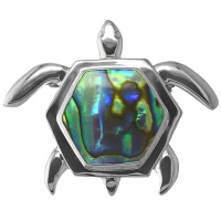 Paua Shell SeaTurtle Pin/Pendant