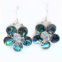 Large Crystal Frog Paua Shell Earrings