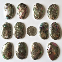 Offerings Sajen Twelve 40x25mm Mother of Pearl Backed Baby Paua Shells